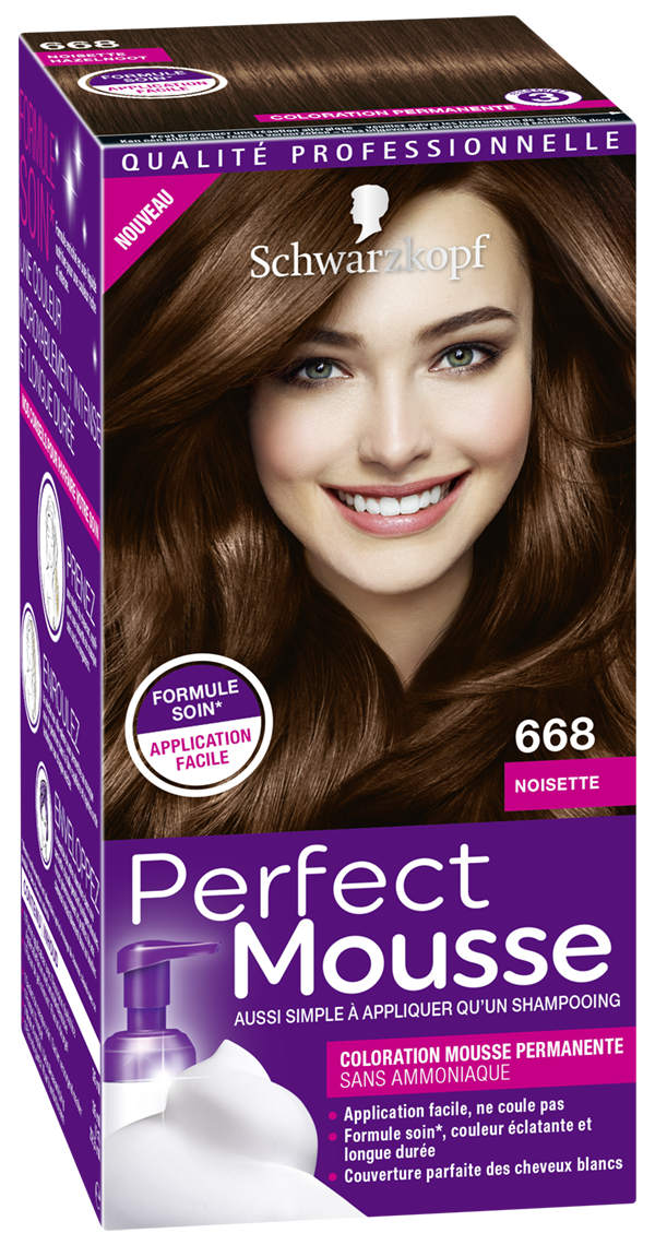 3178040678866 668 Perfect Mousse Noisette 3D