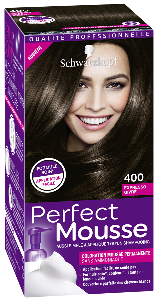 3178040678903 400 Perfect Mousse Expresso Givré 3D