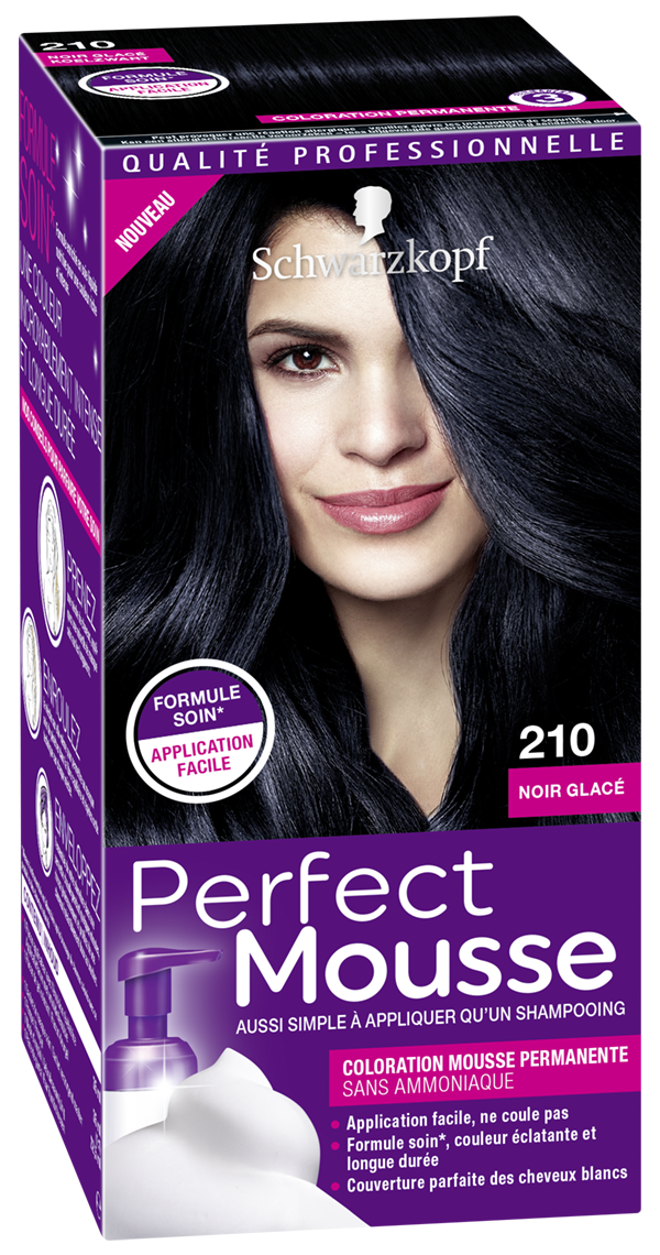 3178041313650 210 Perfect Mousse Noir Glacé 3D